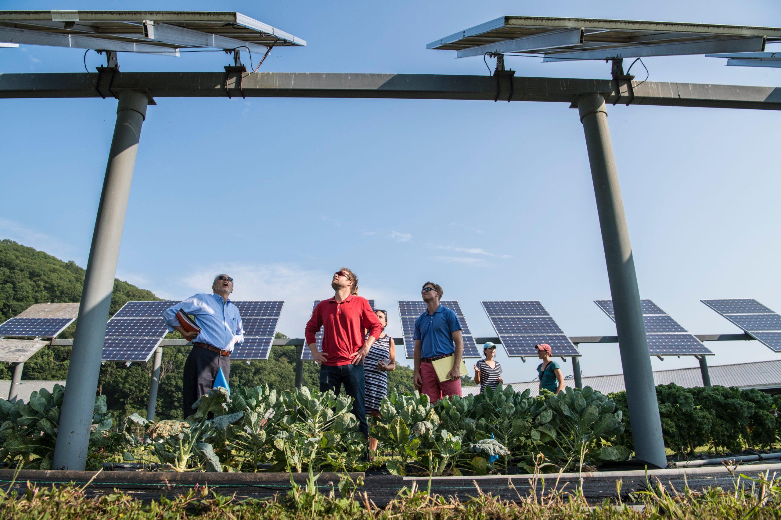 自家消費型太陽光発電 メリット